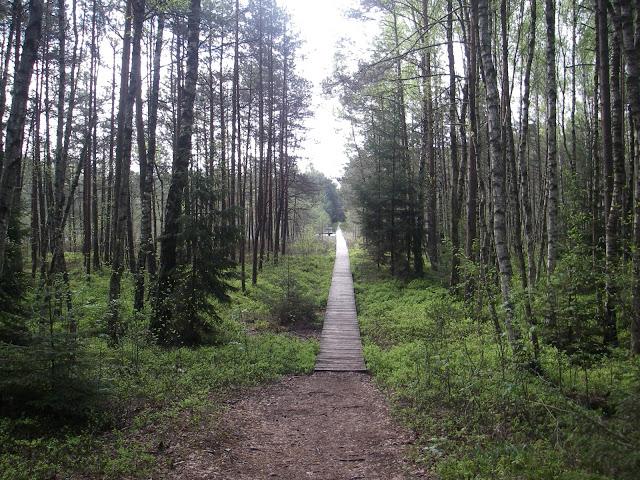 Varnikų pažintinis gamtos takas